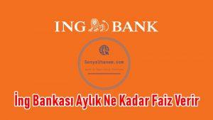 İng Bankası Aylık Ne Kadar Faiz Verir