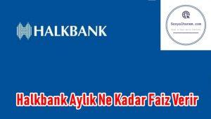 Halkbank Aylık Ne Kadar Faiz Verir