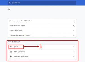 Google Chorme Kayıtlı Şifreleri Görme ve İndirme